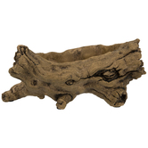 Tree Root Container