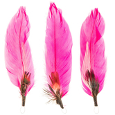 Teal, White Or Pink Pheasant & Goose Feathers