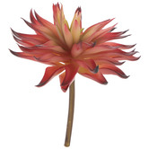 Red & Green Spiky Succulent Flower Pick