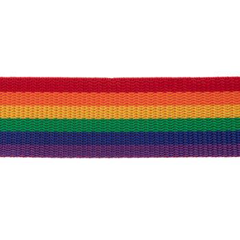 Rainbow Striped Belting Trim