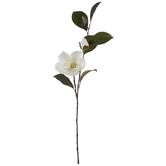 White Magnolia Spray