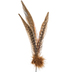 Natural Pheasant Feather Spray