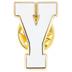 White Letter Metal Pin - Y