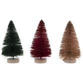 Sisal Trees