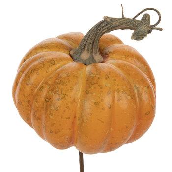 Orange Pumpkin Pick