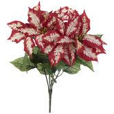 Red & Cream Poinsettia Bush