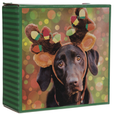 Dog With Reindeer Antlers Puzzle