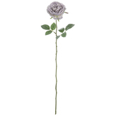 Single Rose Stem