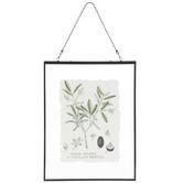Olive Tree Print Framed Wall Decor