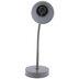 Gray Metal Task Lamp