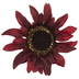 Burgundy Sunflower Clip Ornament