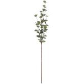 Eucalyptus Stem With Glitter