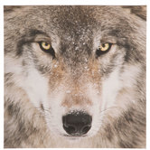 Snowy Wolf Canvas Wall Decor