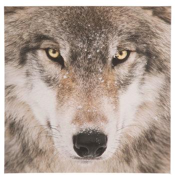 Snowy Wolf Canvas Wall Decor