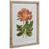 Flower Specimen Framed Wall Decor