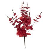 Red Metallic Eucalyptus Bush