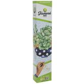 Succulents Diamond Art Intermediate Kit