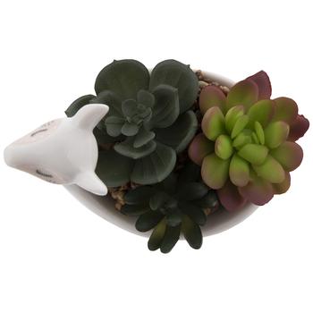 Succulents In Llama Pot