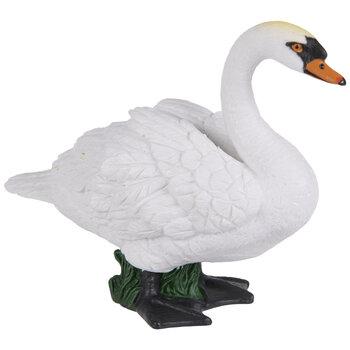 White & Black Swan