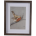 Winter Bird Framed Wall Decor