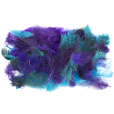 Turquoise & Purple Mix Packaged Feathers