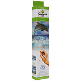 Dolphin Diamond Art Intermediate Kit