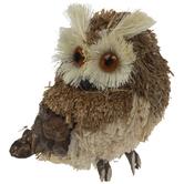 Natural Owl