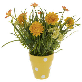 Yellow Mum & Daisy Arrangement In Polka Dot Pot