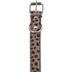 Leopard Print Pet Collar