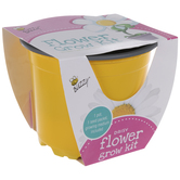 Daisy Starter Flower Grow Kit