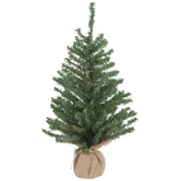Evergreen Tree - 2'