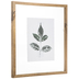 Green Leaf Impression Framed Wall Decor