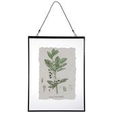 Bean Plant Print Framed Wall Decor