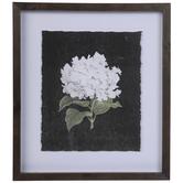 White Hydrangea Framed Wood Wall Decor