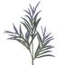 Green & Purple Podocarpus Pick