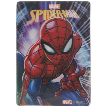 Spider-Man Lenticular Magnet