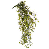 Green Weeping Willow Hanging Bush