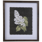 Black & White Floral Framed Wall Decor