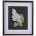 Black & White Floral Framed Wall Decor