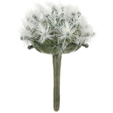 Round Prickly Cactus Pick