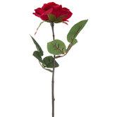 Red Rose Pick