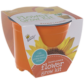 Sunflower Starter Flower Grow Kit
