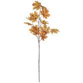Orange Maple Leaves Stem