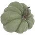 Green Speckled Fairytale Pumpkin