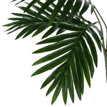 Areca Palm Bush