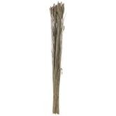 Dried Whitewash Triticale Bundle
