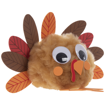 Turkey Pom Pom Craft Kit