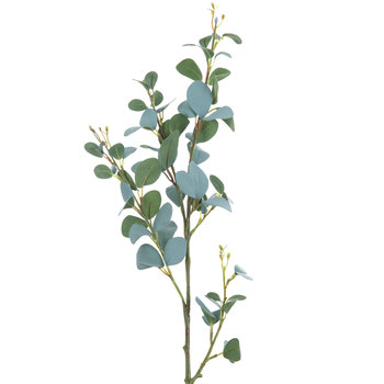 Green Eucalyptus Spray