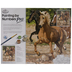 Galloping Horses Paint By Number Kit