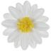 Yellow & White Daisy Adhesive Wall Decor - 4
